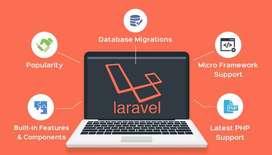 PHP/Laravel/Android/ReactJS developer