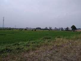 Tanah Industri 2,39 Ha JATIM DEPO ESTATE Jabon Siap Bangun Nol Jalan