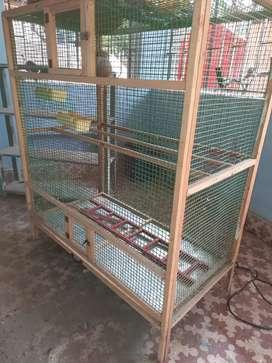 Love birds wood cage