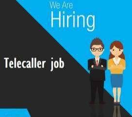 We need Female Telecaller( Loan Department)