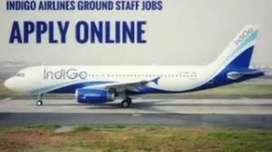 Hiring for ground staff
