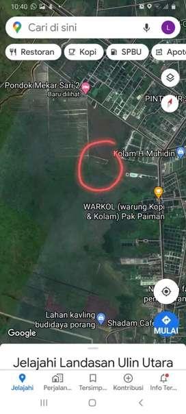Jual MURAH Tanah 1 hektar di Cindai Alus Martapura
