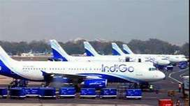 GROUND STAFF***INDIGO AIRLINES HIRING APPLY FAST.