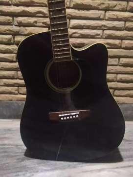guitar -aria