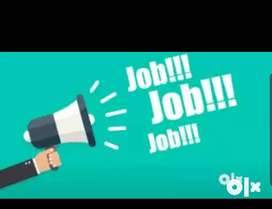 Urgent opening in Bank for Computer Operator/ Data entry/Back office/