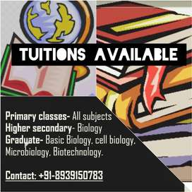 Tuition classes  (100-500 hourly)