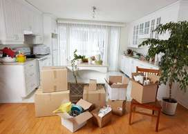 Panther Packers and Movers Ltd