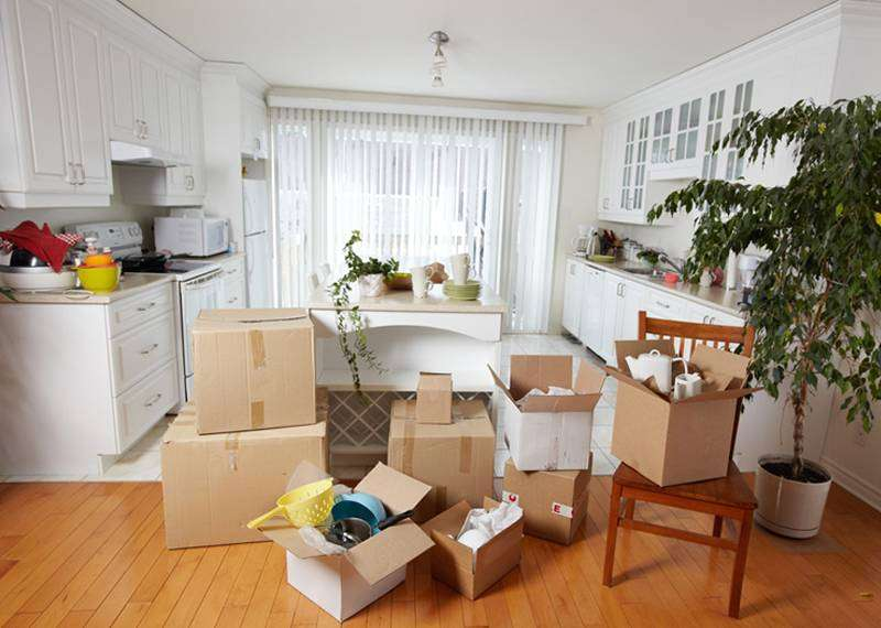 Panther Packers and Movers Ltd 0