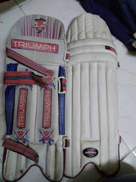 Bastman batting pad