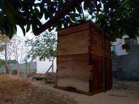 Honey Bee(1 box with bees 3 box without Bees) Box Sale in Pollachi
