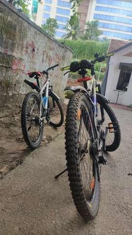 DAURADO CYCLE 27.5