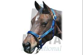 Horse Halters, with soft pad