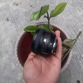 lensa nikon 50 mm afs f 18 murah