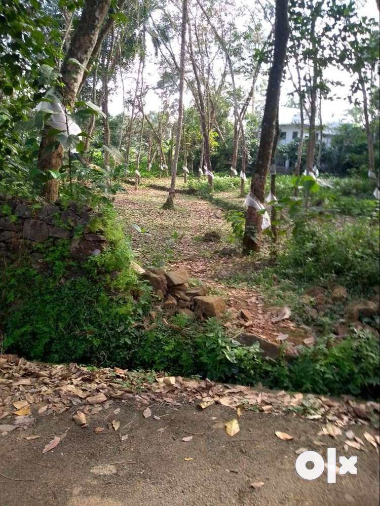 1 acre 30 cent plot at kochidappady, pala for sale