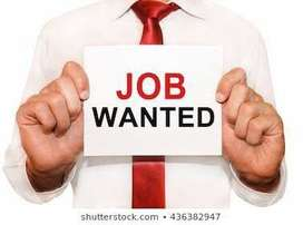 wanted accountant  with exp