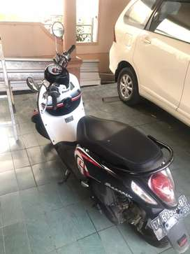 Scoopy pajak hidup