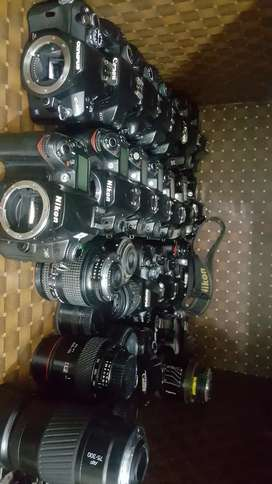 Dslr Cameras Now Available in Reasonable Price