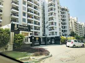Newly Built 3 BHK Flat available for rent in TDI, Mohali, Airport Road