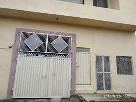 10 merla Goddam for sale in muridke