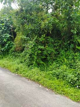 Plot Sale for Sale at Yangang