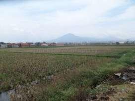 tanah potensial pergudangan atau cluster mainroad propinsi rancaekek