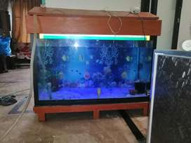 4 feet Aquarium(Rs. 8000) with all accessories