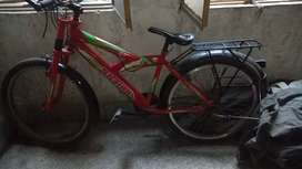 Super shion bicycle