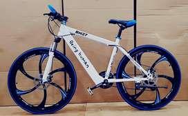 luxury premium cycles