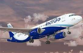 RECRUITMENT!!! NOW OPENS IN INDIGO AIRLINES JOIN US.  This Opportunity