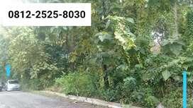 Tanah murah luas tepi jl kabupaten dekat kantor Pemkab gunungkidul