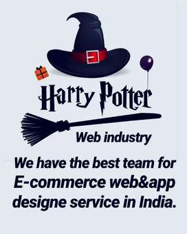 We have the best team for E-commerce web design service in India