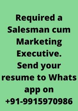 Required Salesman cum Marketing Executive