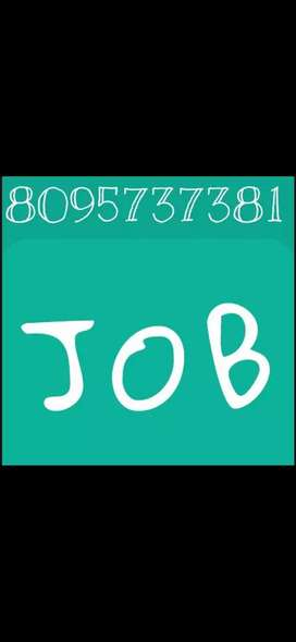 Job's for MNC company
