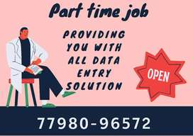 surety of your payment data entry work at a home
