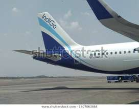 Hiring in Airlines job on roll Vacancy for full time  Qualifications