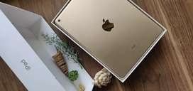 iPad only 1 year old in rose gold