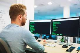 Developer WORK FROM HOME