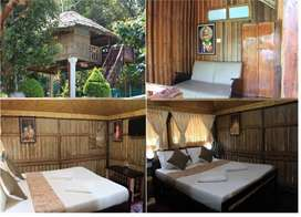 6 Cottages, Hotel/Resorts for Lease/rent/Sale in Thekkady