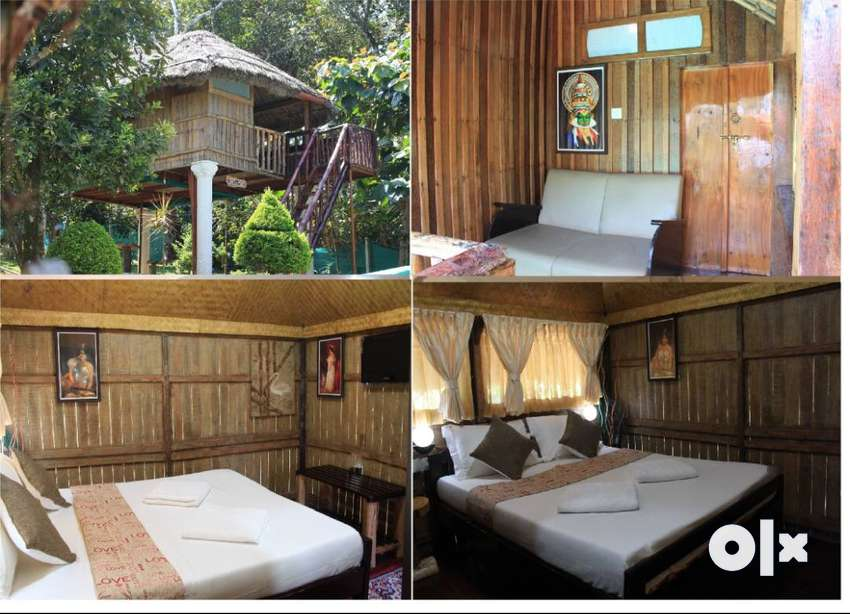 6 Cottages, Hotel/Resorts for Lease/rent/Sale in Thekkady 0