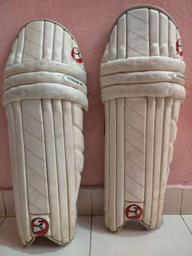 SG pad & addidas bat