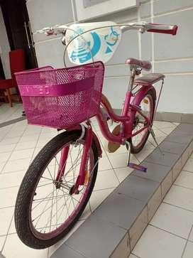 Sepeda Anak United BSD Tangsel