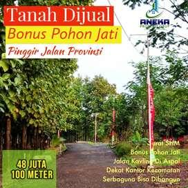 Jual Tanah 310m² Bonus Pohon Jati di Transyogi Pinggir Jalan Provinsi