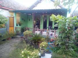 Dijual Rumah Kampung Krembung Sidoarjo siap huni