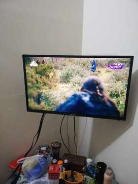 Orient LED 32 inch