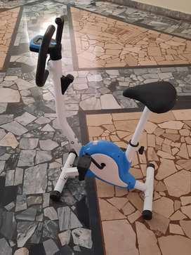 Electronic Cycle for Fitness