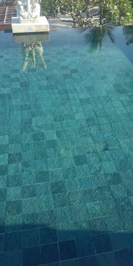 Maintenance n treatment swimming pool.incloude chemical