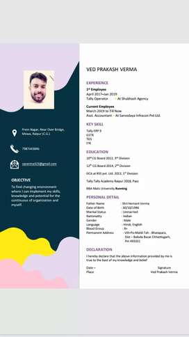 I am need of the assistant accountant job