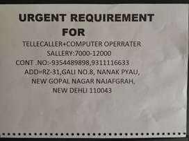 Required a female for calling and data entry