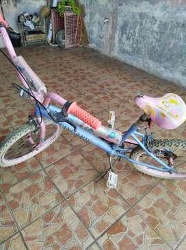Sepeda anak bekas (nego)