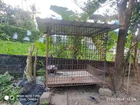 Kennel for sale(dog)